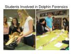 students involved in dolphin forensics