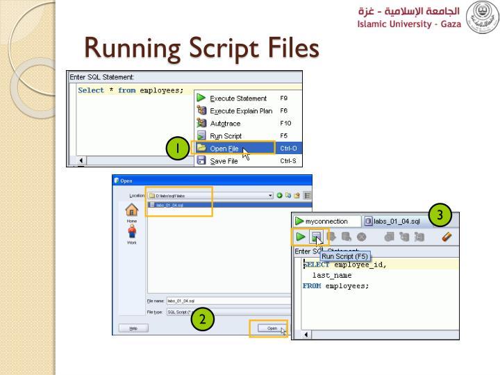 Running Script Files
