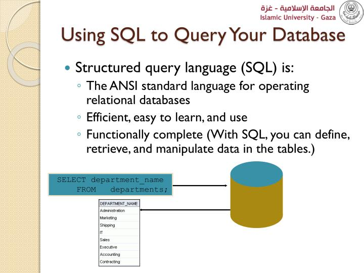 Using SQL to Query Your Database