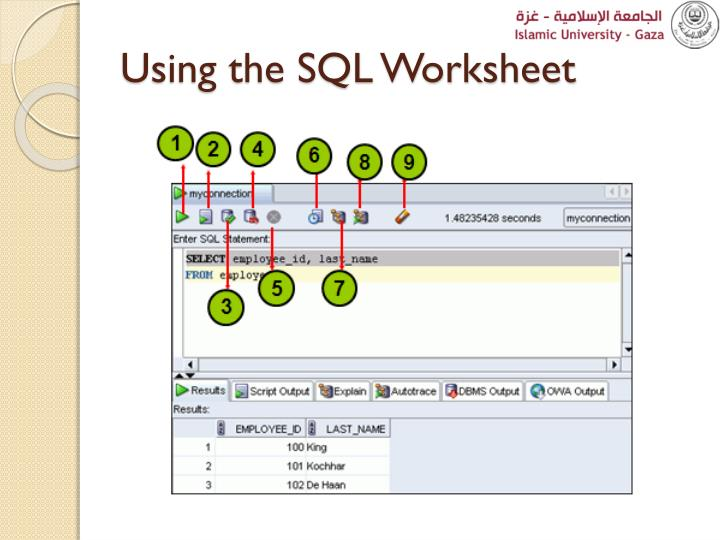 Using the SQL Worksheet