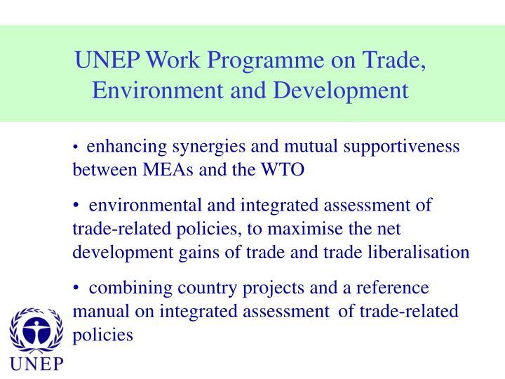 UNEP Work Programme on Trade,