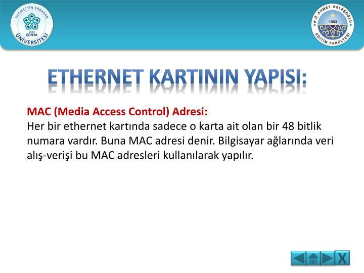 ETHERNET KARTININ YAPISI:
