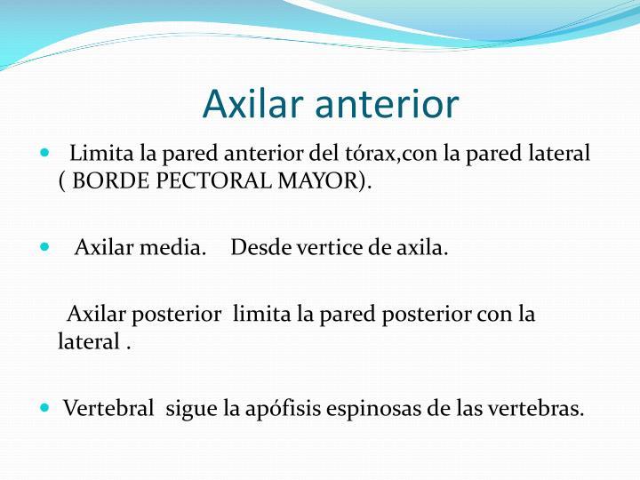 Axilar anterior
