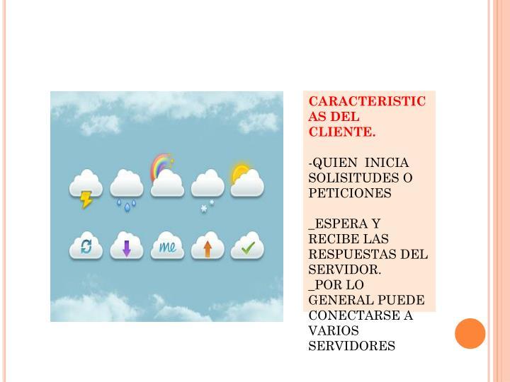 CARACTERISTICAS DEL CLIENTE.