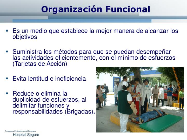 Organización Funcional