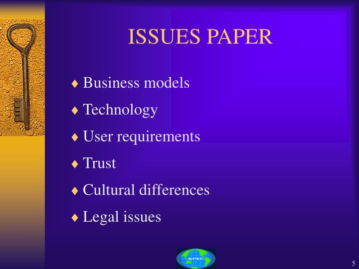 ISSUES PAPER