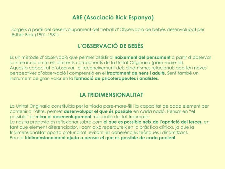 ABE (Asociació Bick Espanya)