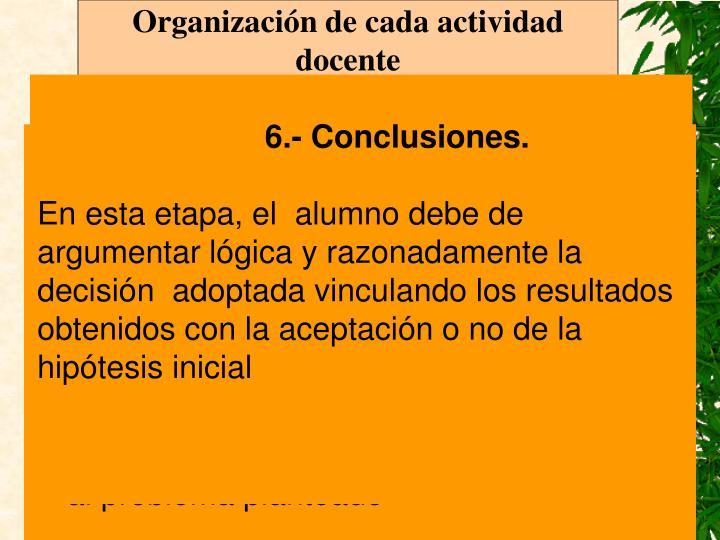 Organización de cada actividad