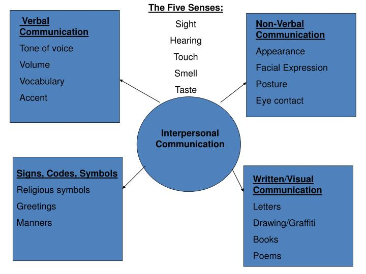 The Five Senses: