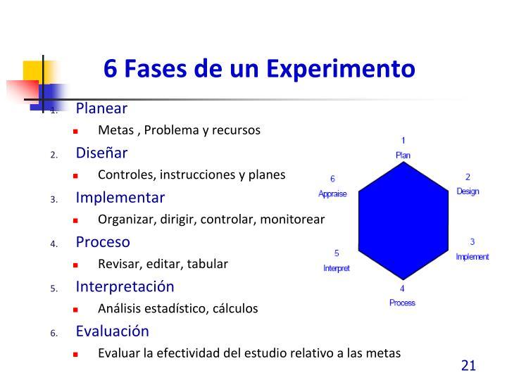6 Fases de un Experimento