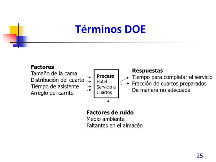Términos DOE