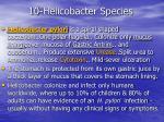 10 helicobacter species