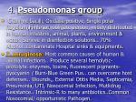 4 pseudomonas group