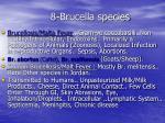 8 brucella species