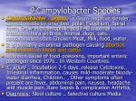 9 campylobacter species