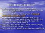 helicobacter species 2