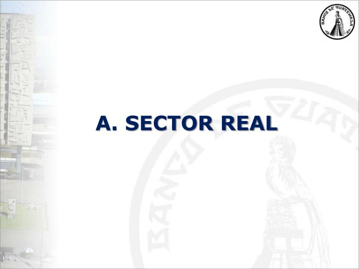 A. SECTOR REAL