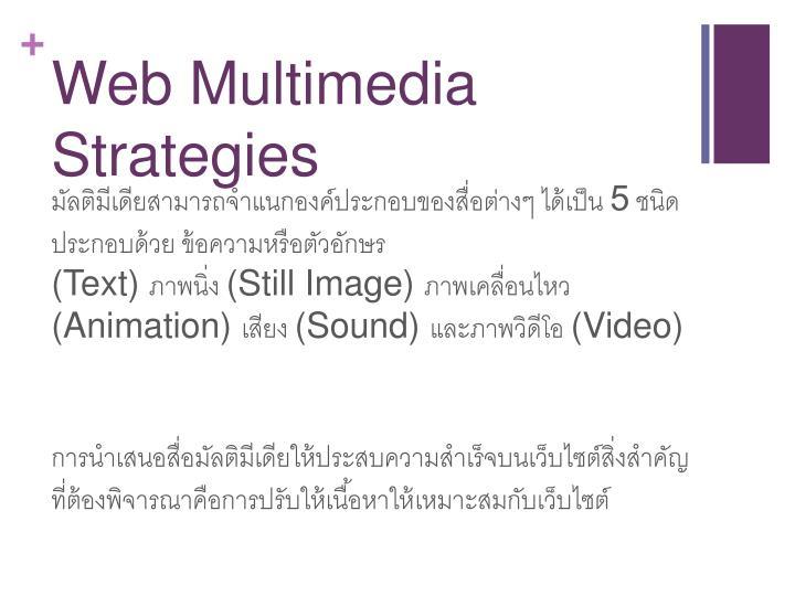 Web Multimedia Strategies