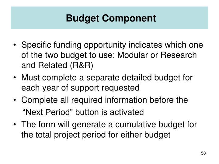 Budget Component