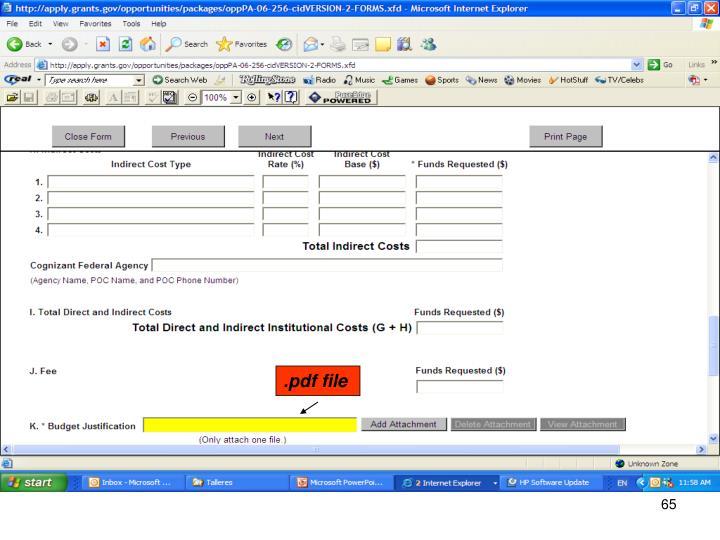 .pdf file