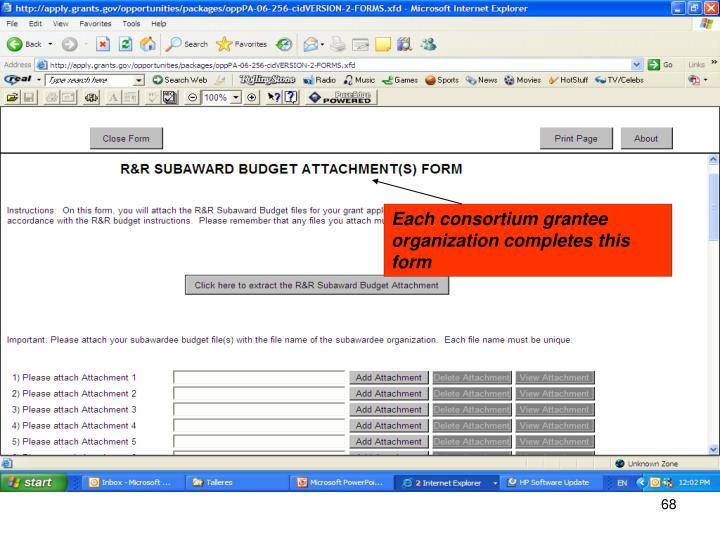 Each consortium grantee organization completes this form