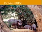 the future of hipaa