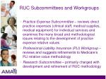 ruc subcommittees and workgroups1