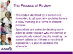the process of review1