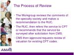 the process of review3