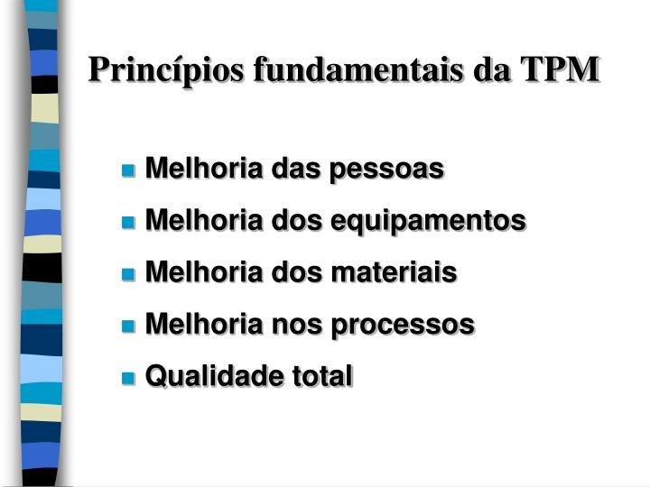 Princípios fundamentais da TPM