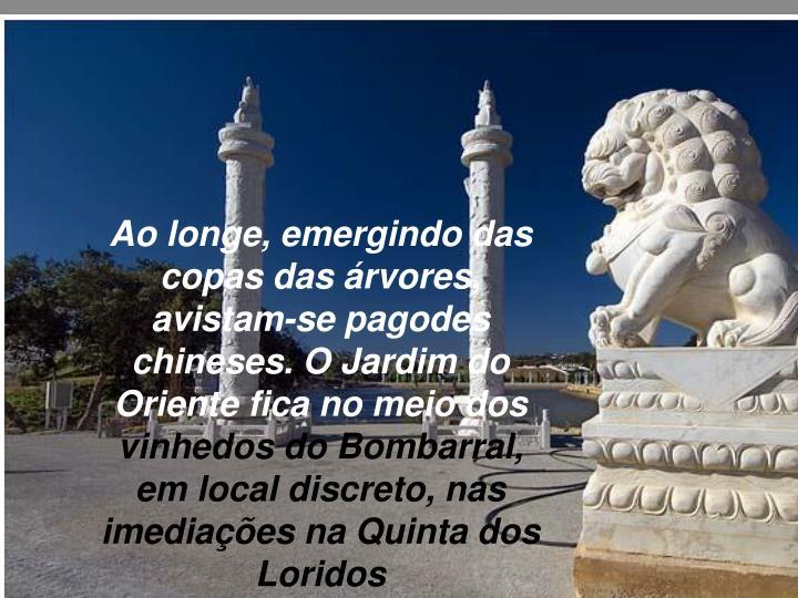 Ao longe, emergindo das copas das árvores, avistam-se pagodes chineses. O Jardim do Oriente fica no meio dos