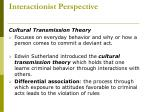 interactionist perspective
