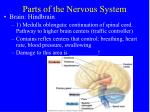 parts of the nervous system1