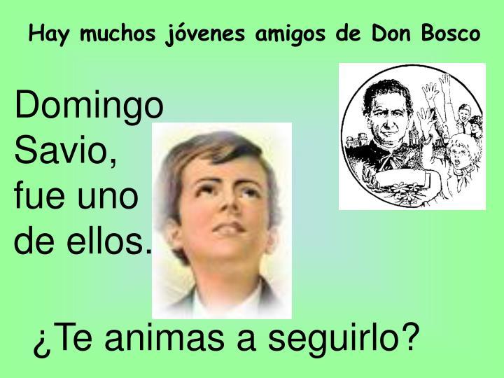 Hay muchos jóvenes amigos de Don Bosco