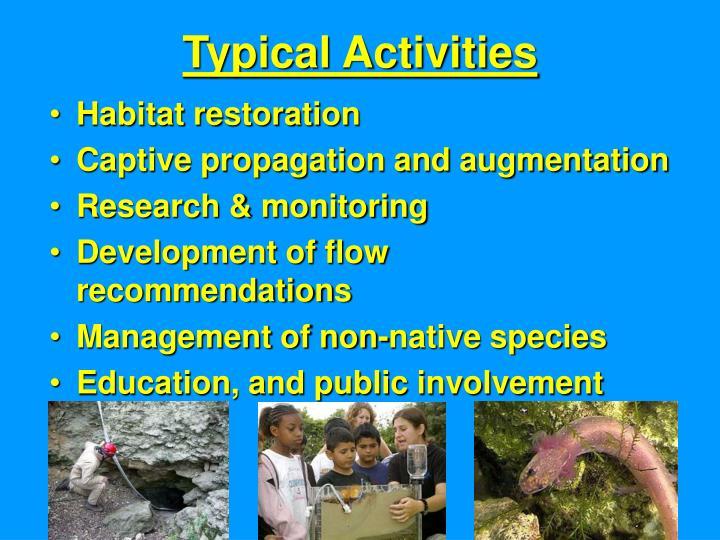 Typical Activities