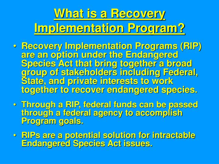 What is a Recovery Implementation Program?