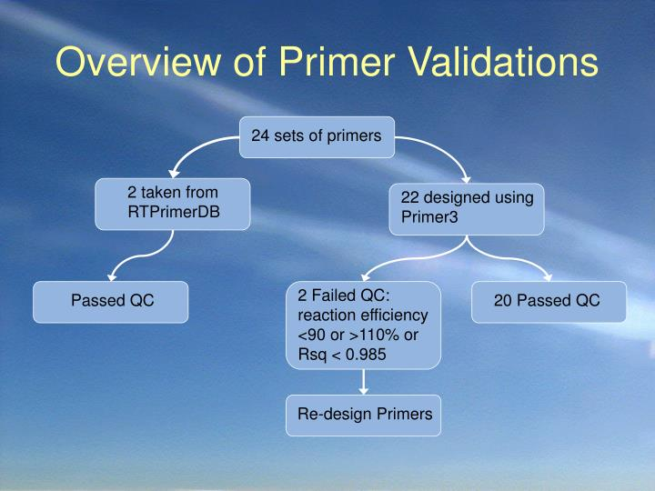Overview of Primer Validations