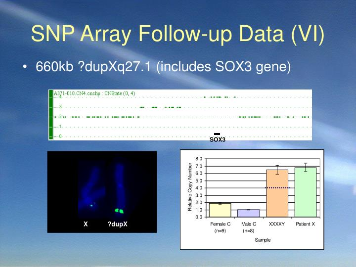 SNP Array Follow-up Data (VI)