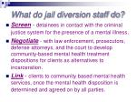 what do jail diversion staff do