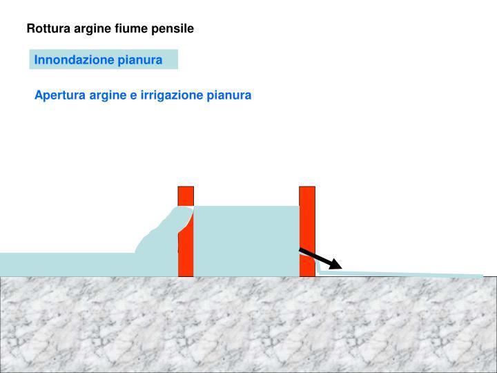 Rottura argine fiume pensile
