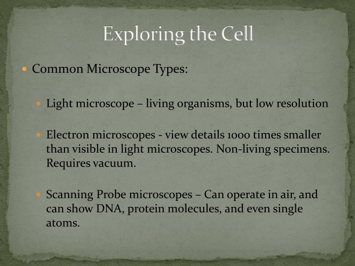 Exploring the Cell