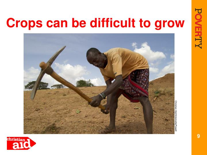 Crops can be difficult to grow