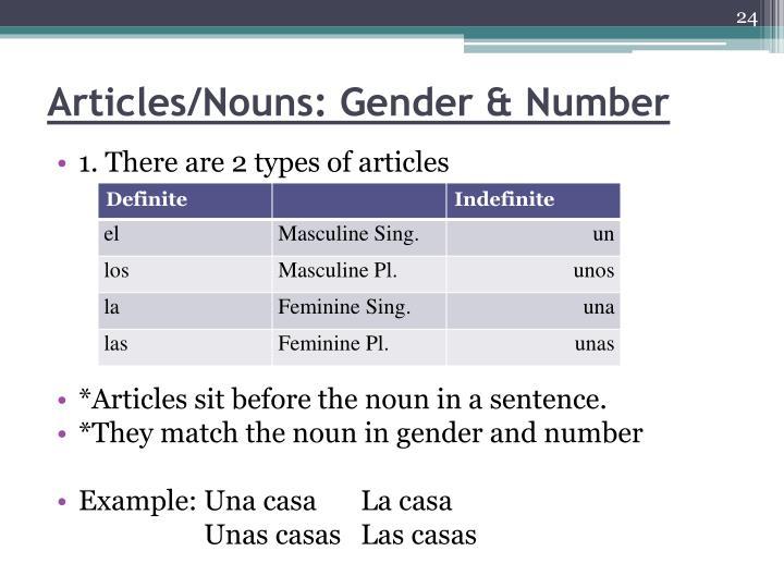 Articles/Nouns: Gender & Number