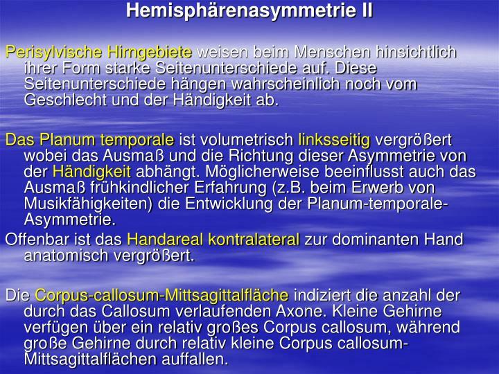 Hemisphärenasymmetrie II