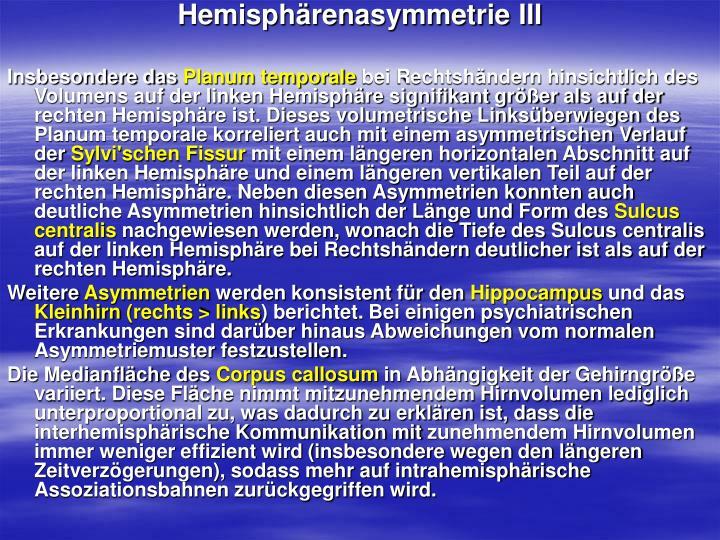 Hemisphärenasymmetrie III