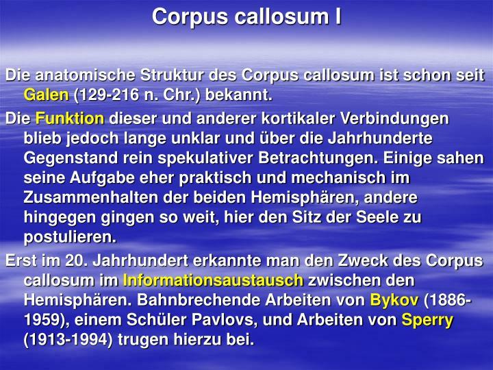 Corpus callosum I
