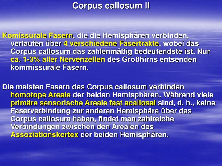 Corpus callosum II