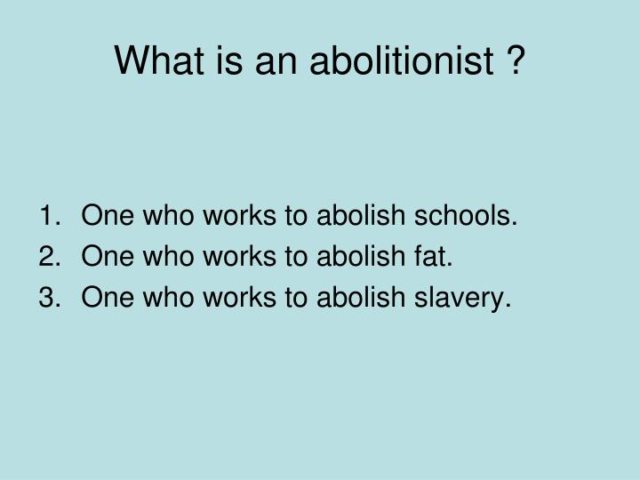 What is an abolitionist ?