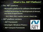 what is the net platform