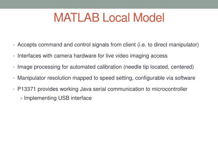 MATLAB Local Model